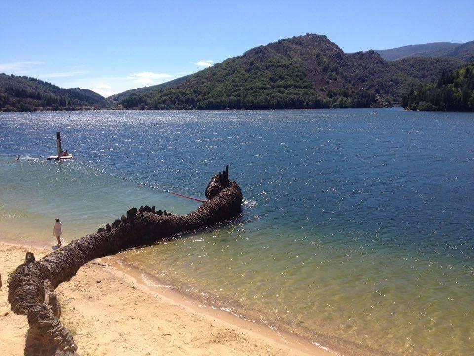 Dragon en lauze sur le lac de villefort
